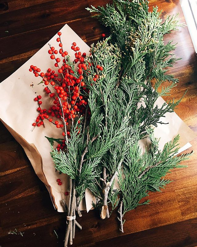 Things are getting festive @seedlings.pec!🌲😍 Thank you @dahliamayflowerfarm for making our dining room smell of Incense Cedar, it's perfection! If you don't have plans today stop by their Holiday Market. Then come visit us for a cozy dinner, & some wine! Open for brunch 8am-3pm & for dinner 5pm-9pm. Our Countylicious menu, and Chef's tasting menu are on tonight!🌱 . . . #holiday #holidaydecor #onmytable #diningroom #greenery #smellsogood #supportlocal #eat #pecfood #drink #pec #seasonal #farmtotable #ontariofoodie #visitthecounty #restaurant #seedlingskitchen #bloomfield #princeedwardcounty