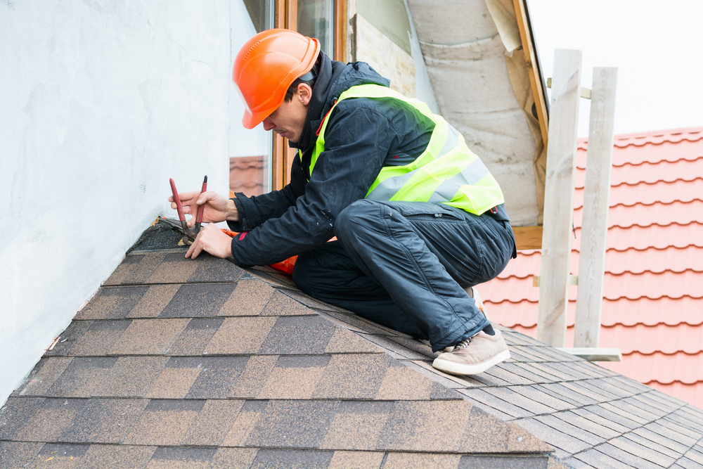 roof repair professional.jpg