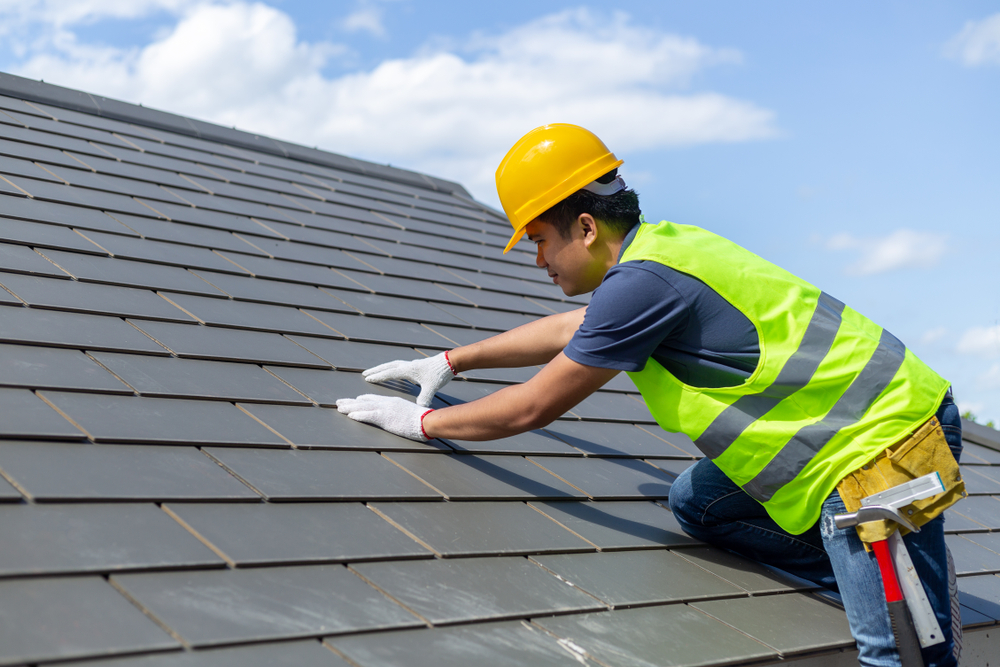 Important Points You Should Know For Roof Replacement