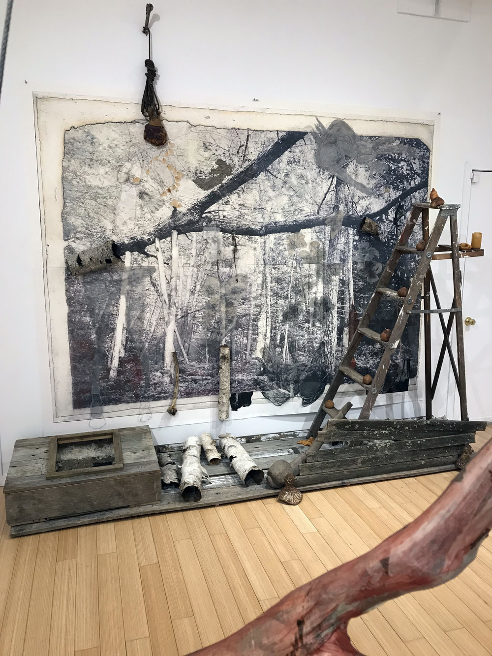 """She fell, he disintegrated, Black Flowers rained down as darkness descended"", 10' x 10', sculpture memorial with fallen tree, photogravure, giclee print, graphite, charcoal, chalk, pastel, collograph, tarleton, wood, birch bark, wasp paper, rose petals, snake skin, latex, urethane, feathers, bone, dried tangerines and old ladder"
