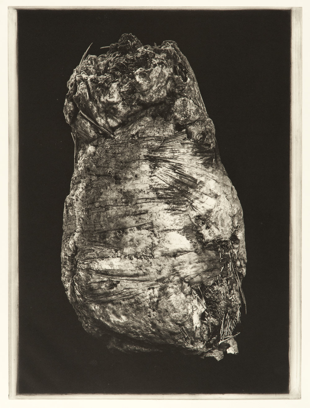 """Degeneration # 4475"", 22"" x 30"", photogravure of urethane sculpture weathered"