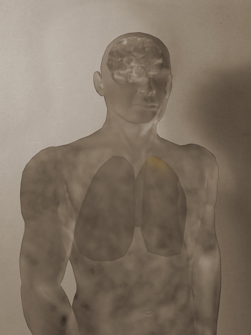 PET Study II: Man Ray/Picabia Imitating Balzac, 2003
