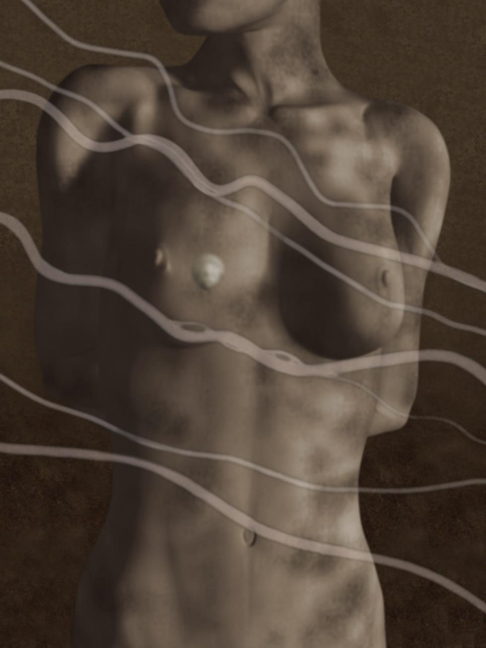Pet Study III: Man Ray/Electricité, 2003