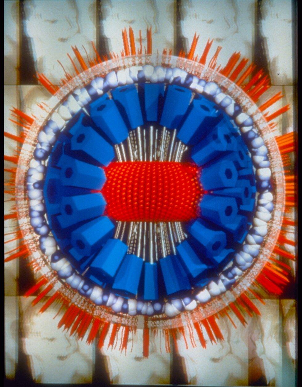Herpes Virus, 1990