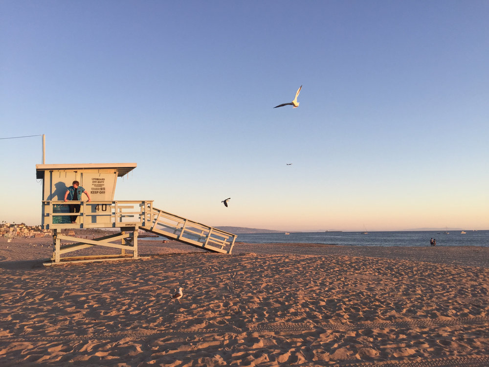 Beach-Pic-With-Seagulls-superimposed-from-other-pic.jpg