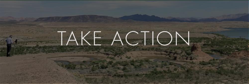 Take Action Banner