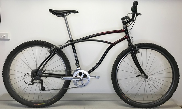 . 1995 Custom Steel Retrotec MTB