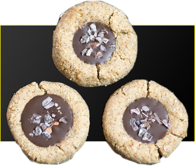 Bioflex's High Protein Gingerbread Cookies