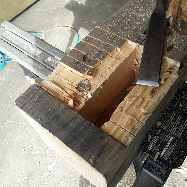 Mortise work.  #andersontimberworks #timberframing #timberframer #mortis #barrchisel