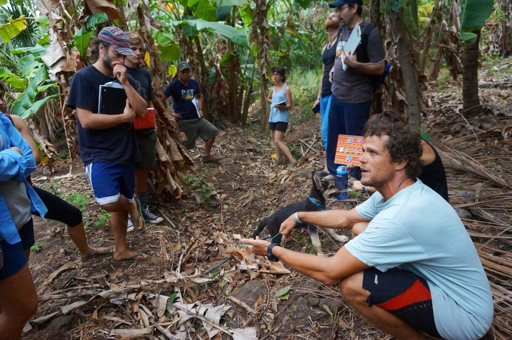 chris shanks permaculture design in the tropics specialist