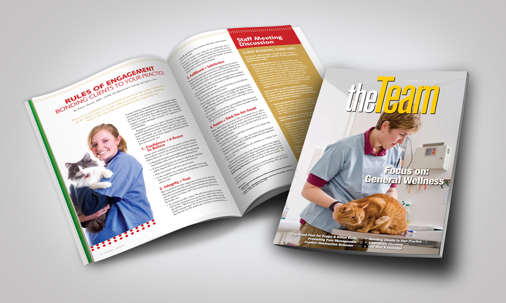 The Team Magazine