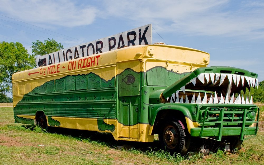 Alligator-Park.jpg