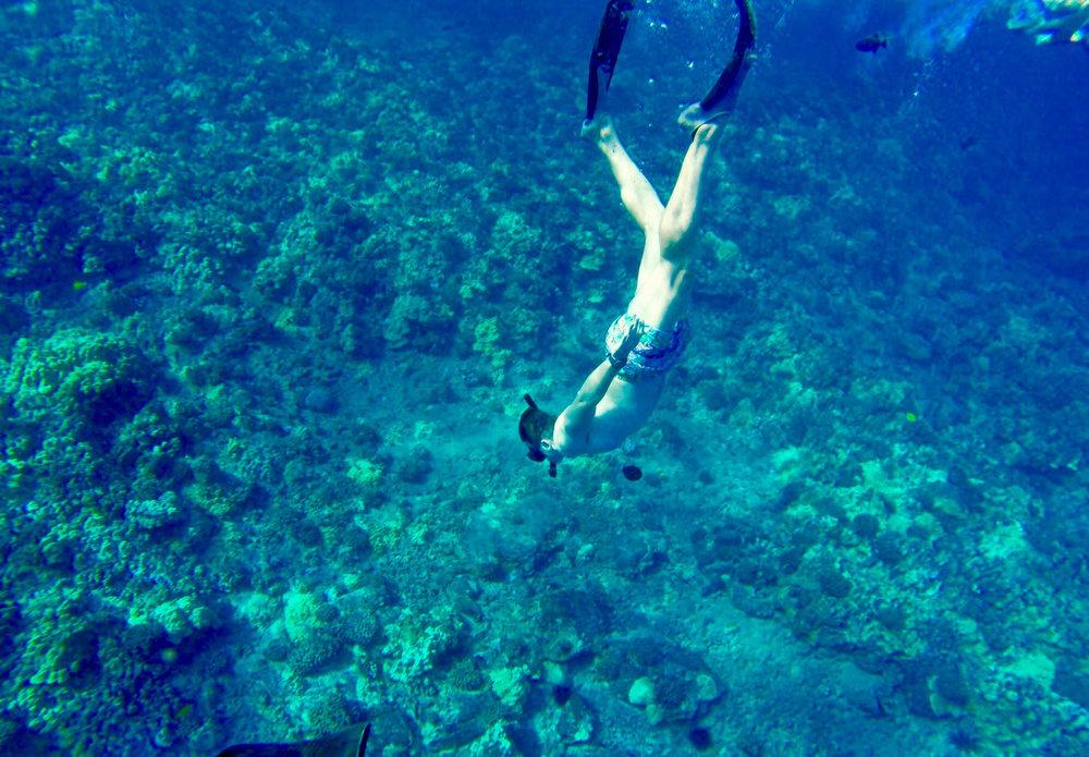 Snorkeling-Picture-4.jpg
