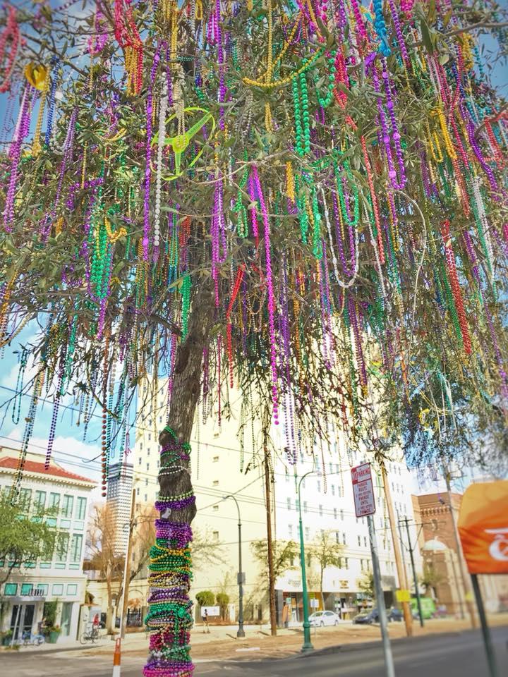 mardi-gras-tree-beads