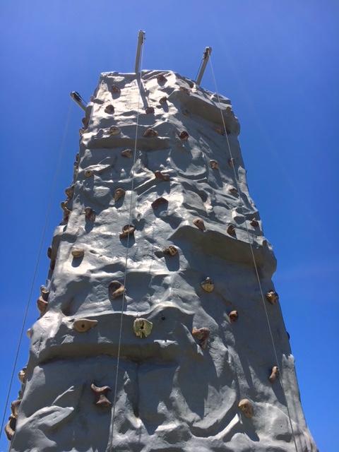 Rock Wall Tall View