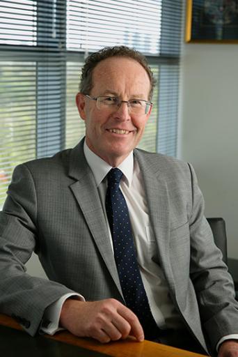 Professor Mark Fitzgerald - Co-chair/Alfred Health Representative
