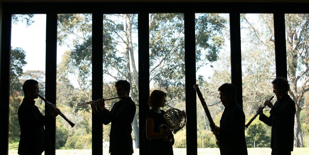 2014 september october - arcadia quintet residency windsong pavillion rehearsal band- photo by Sam Davis - hi res.24242.JPG