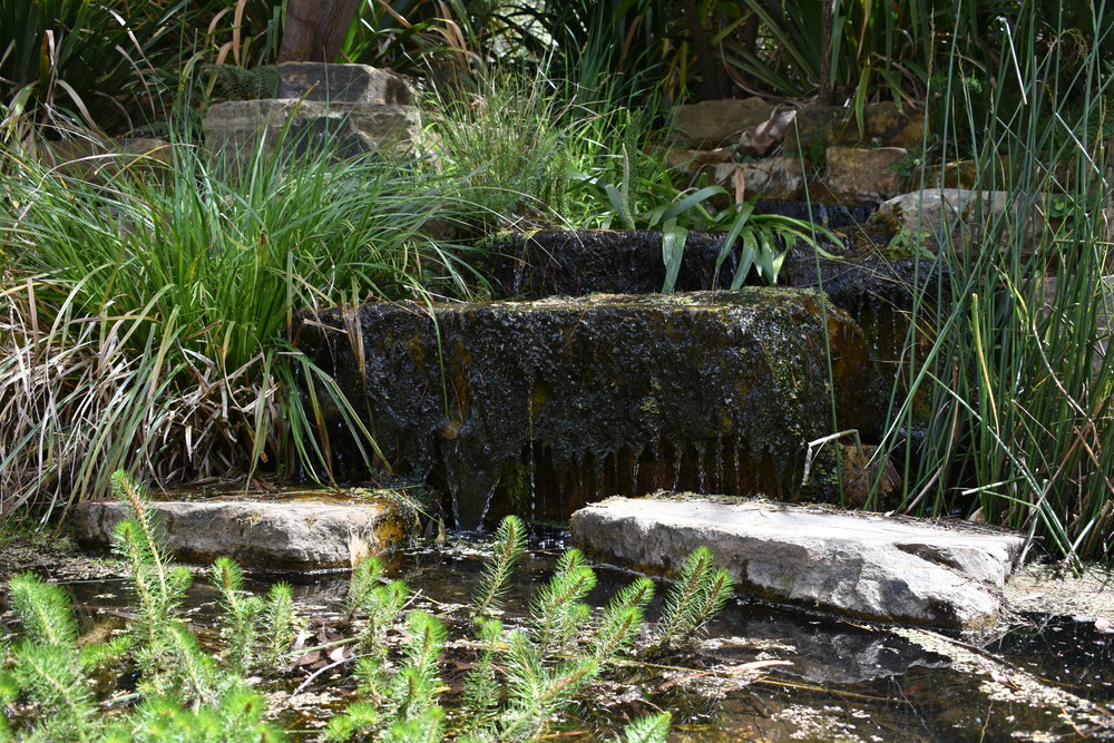 Water feature at the Australian National Botanic Gardens