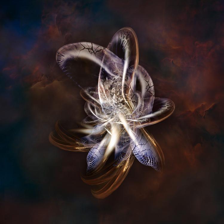 Title: Metallized Molecule. Created in Japan 2018. Digitally enhanced photographic art work.©️SENSEGRAPHIA / Eriko Kaniwa all rights reserved.