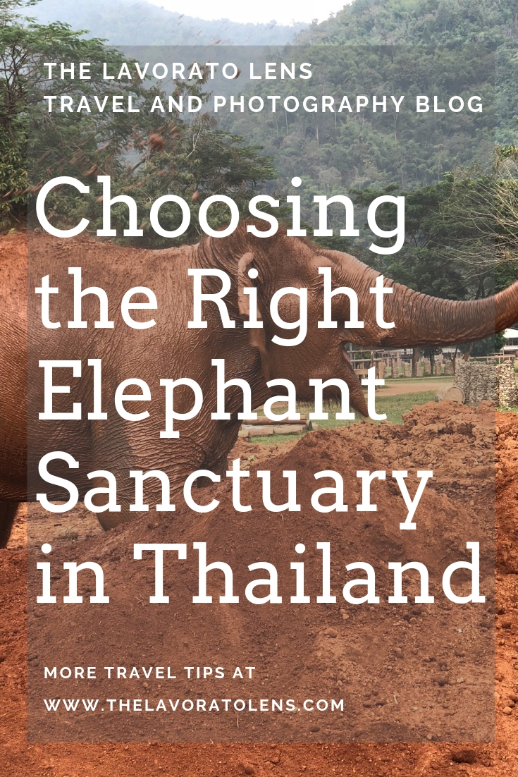 Choosing the Right Elephant Sanctuary in Thailand | The Lavorato Lens