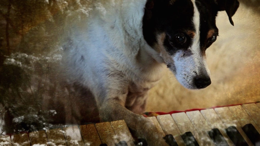 heart-of-a-dog-Laurie-Anderson-