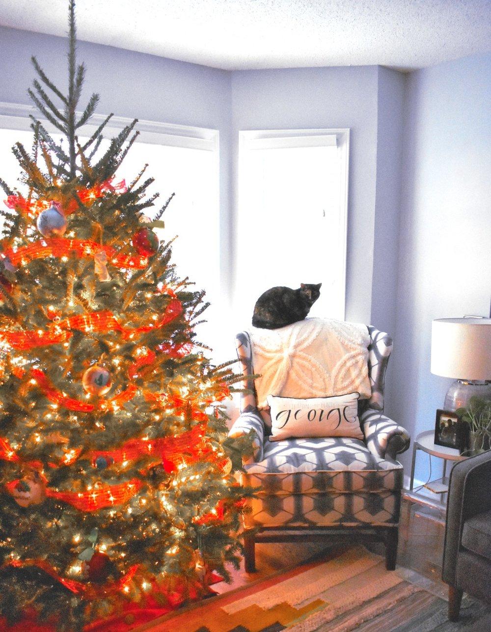 HolidayLiving3.jpg
