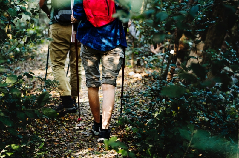 adults hiking together adventure