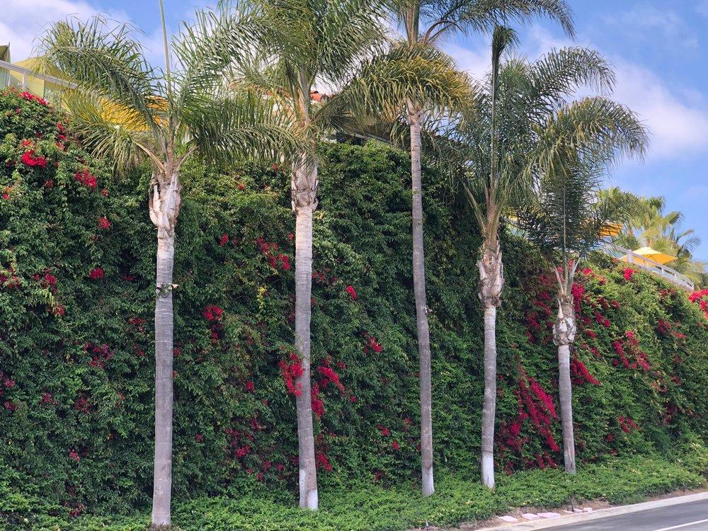 Plantable Walls -