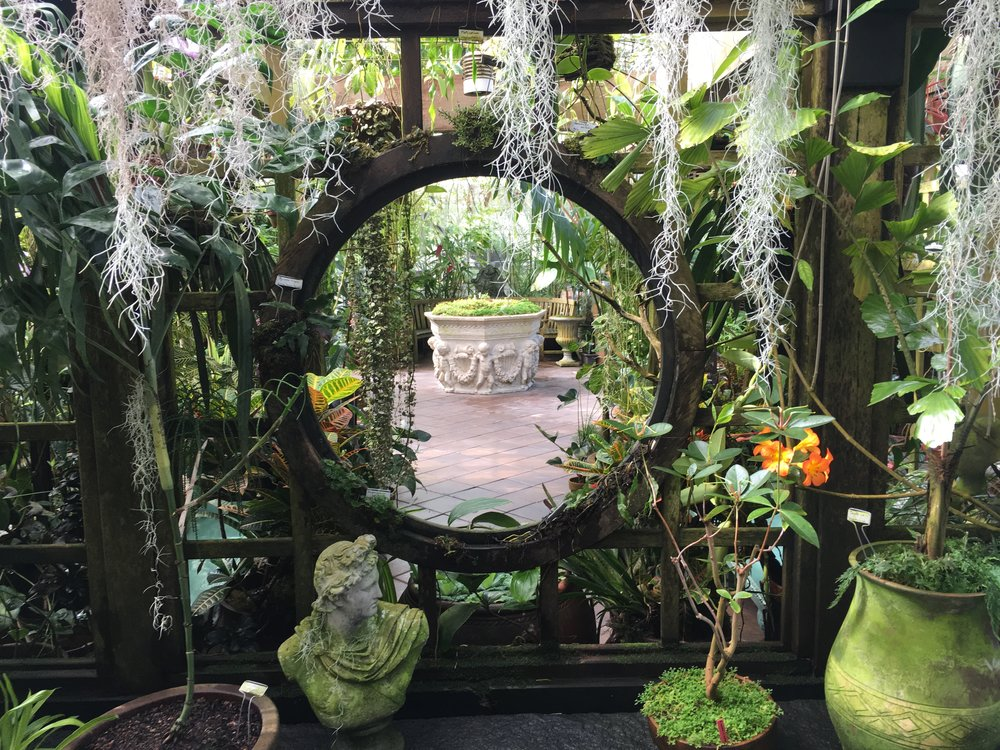 Conservatory of Flowers San Fransisco 2019