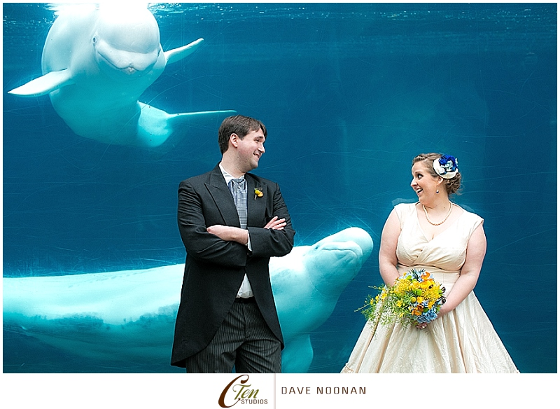 MYSTIC_AQUARIUM_WEDDING_DAVE_NOONAN_FOR_CARLA_TEN_EYCK_PHOTOGRAPHY_0017.jpg