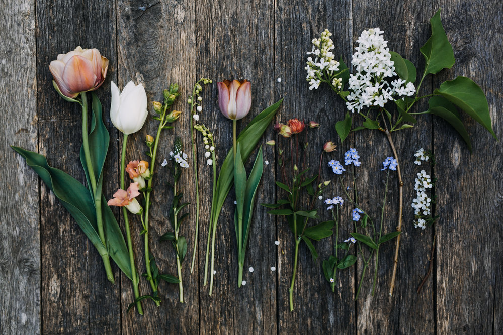 Spring-eva-nemeth-photography-course_01.jpg