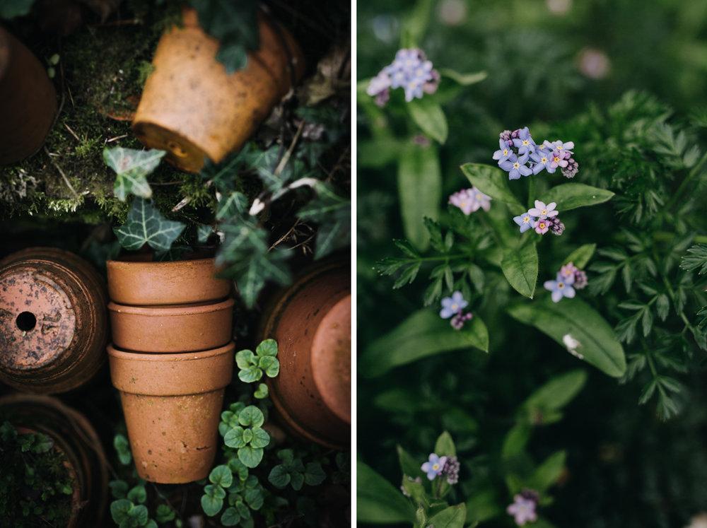 Spring-eva-nemeth-photography-course_02.jpg
