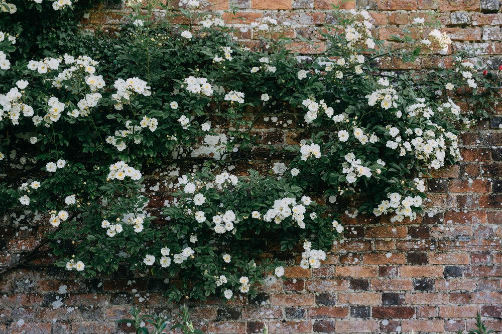 Rousham-Oxfordshire-garden_008.jpg