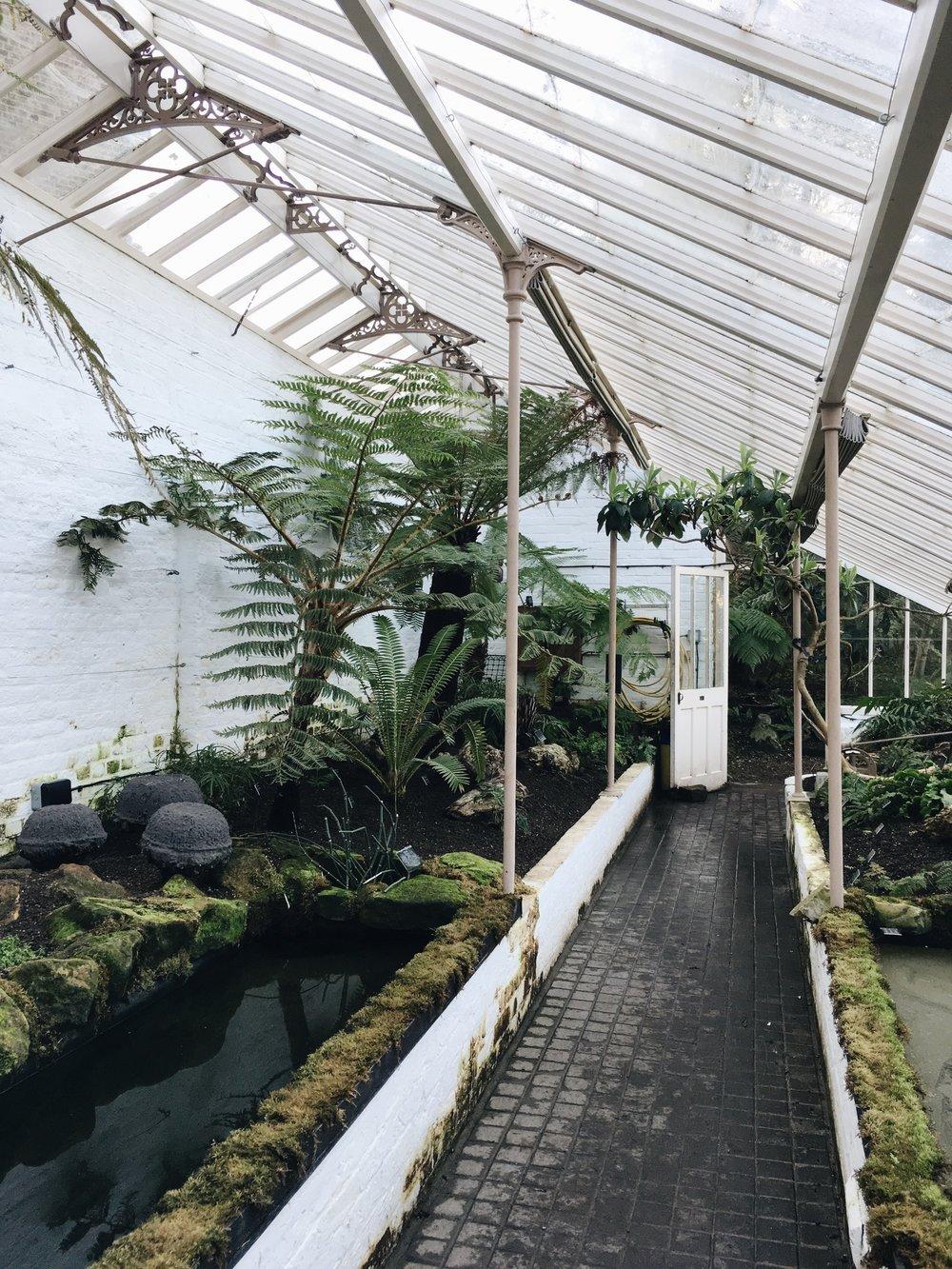 Chelsea-phsysic-garden-eva-nemeth_14b_JPG.jpg