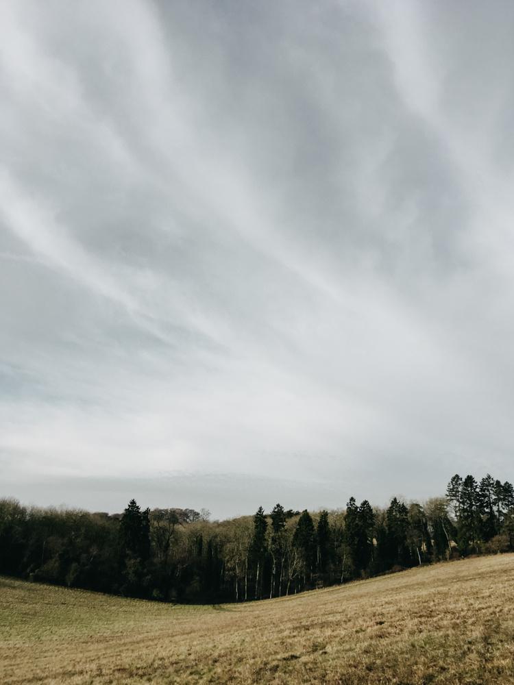 Pishill-winter-walk_004.jpg