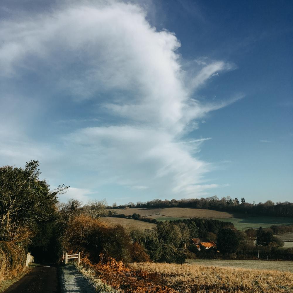 Pishill-winter-walk_008.jpg