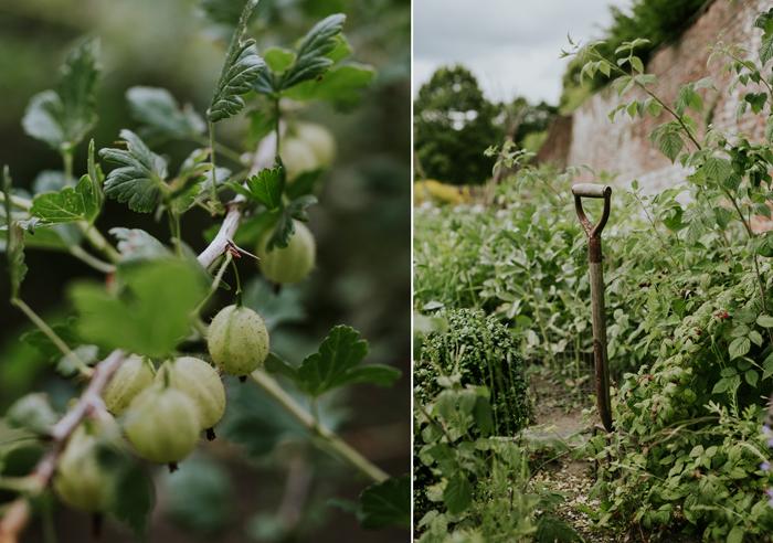 Bradenham-manor-garden-photography-01.jpg