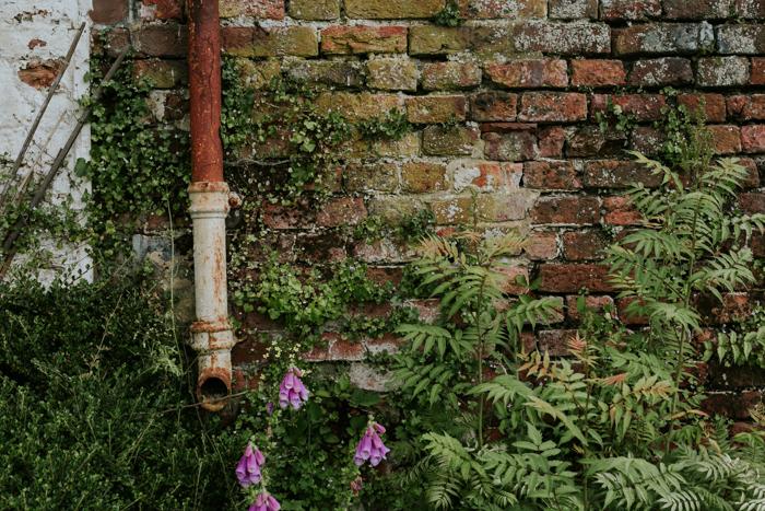 Bradenham-manor-garden-photography-08.jpg