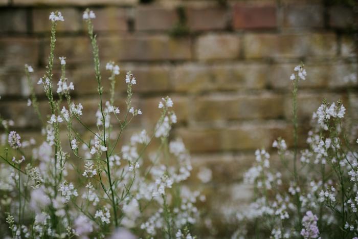 Bradenham-manor-garden-photography-12.jpg