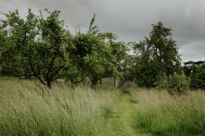 Bradenham-manor-garden-photography-13.jpg