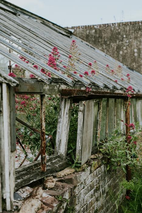 Bradenham-manor-garden-photography-16.jpg