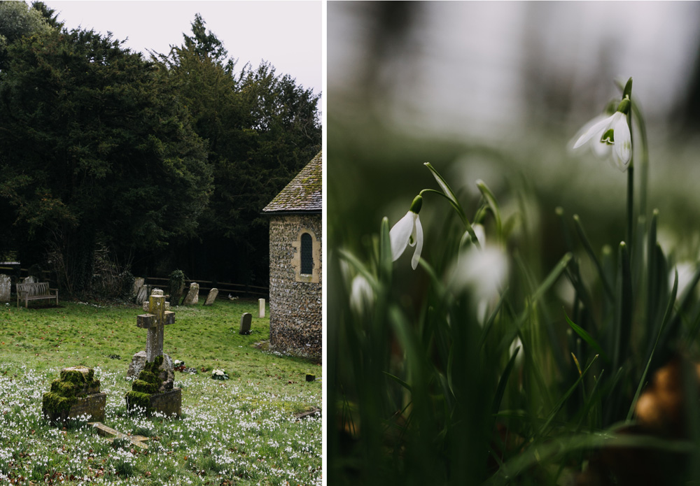 swyncombe-snowdrops-churchyard-oxfordshire-evanemeth_13.jpg