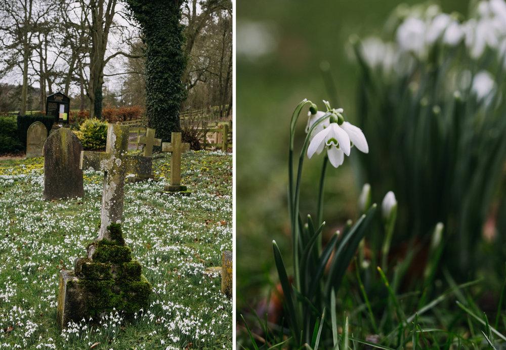 swyncombe-snowdrops-churchyard-oxfordshire-evanemeth_12.jpg