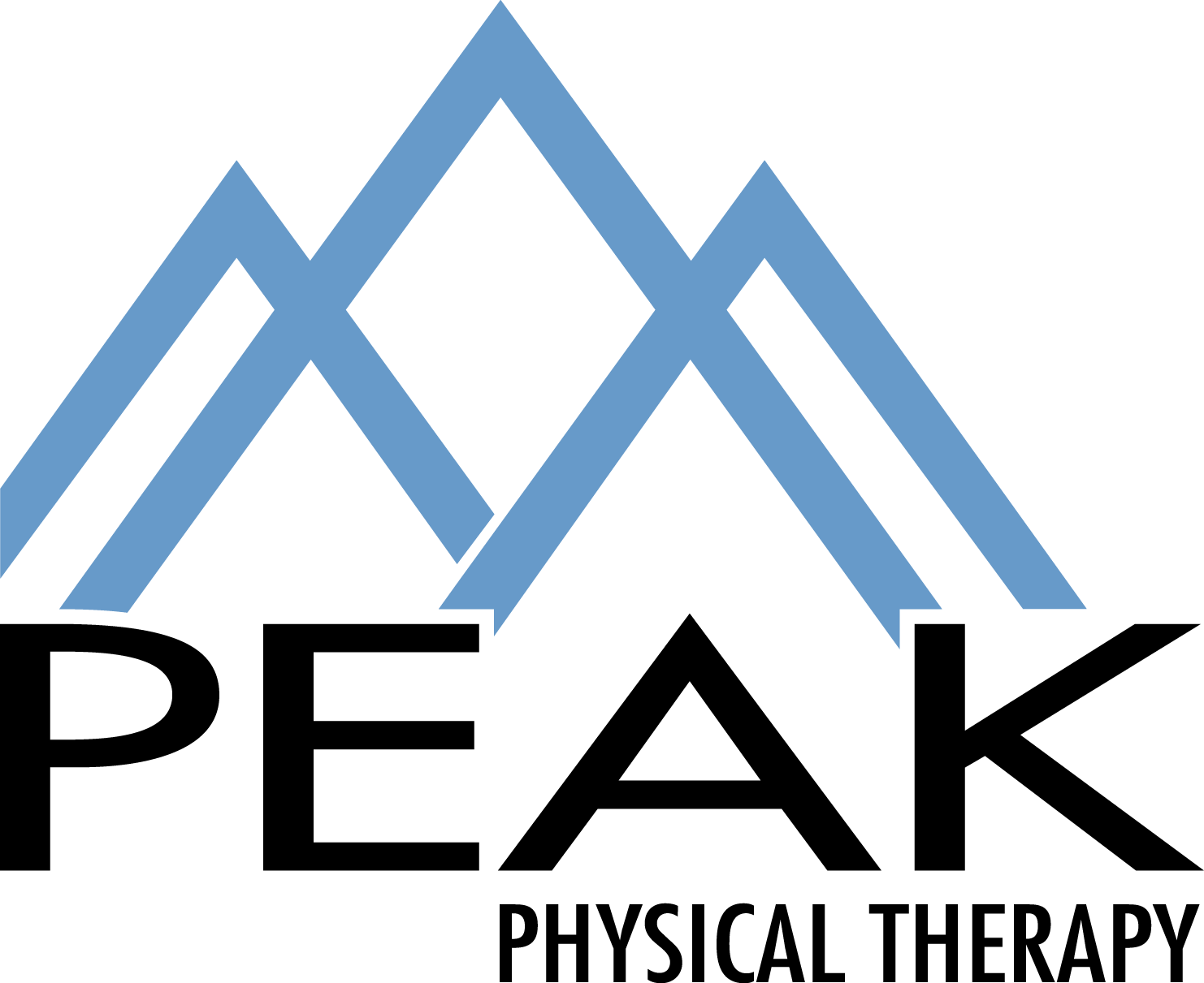 Peak Physical Therapy, LLC