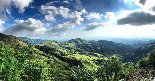 Waaaaaaaaay up there morty #costarica #monteverde #travel