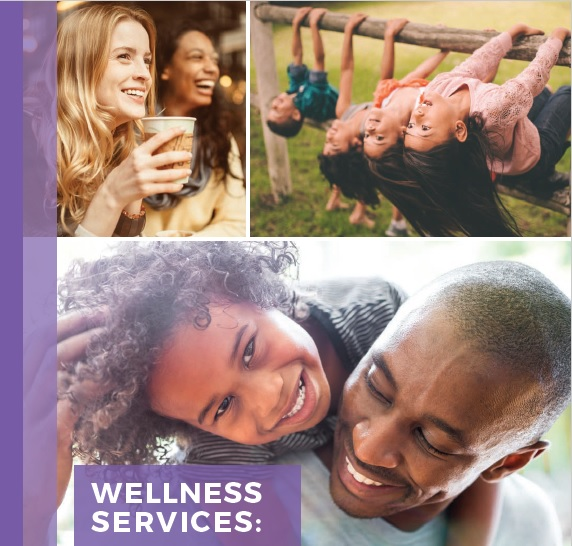 Wellness Services: for Mental Health and Substance Use - Description of services provided by seventeen local agencies
