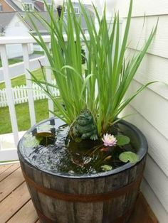 80d7aa008e12e257ff4fa7ac5d1e1930--whiskey-barrels-whiskey-barrel-water-garden.jpg