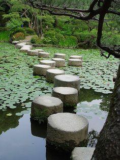 beb6b8b2c176075cb1ac3e11f38ead6f--kyoto-japan-koi-ponds.jpg