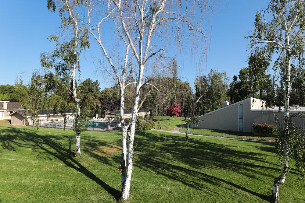 2462 Golf Links Cir Santa Clara Blu Skye Media-1425-X2.jpg