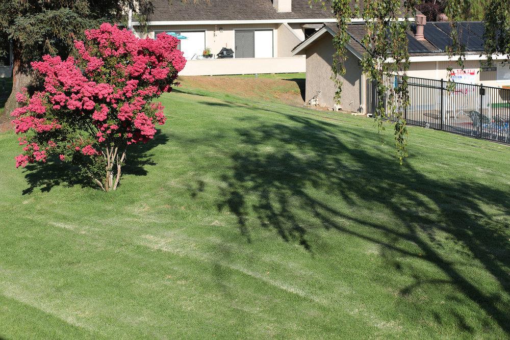 2462 Golf Links Cir Santa Clara Blu Skye Media-1428-X2.jpg